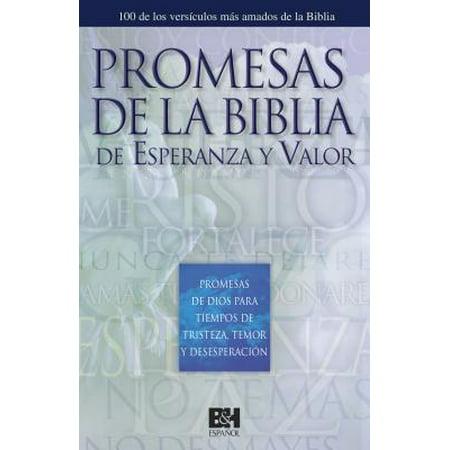 Promesas Bíblicas de Esperanza y Valor : Promesas de Dios para Tiempos de Dolor, Miedo y Desesperanza