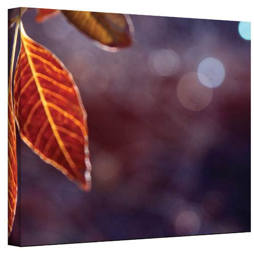 "Mark Ross, ""Fall Lights"" Wrapped Canvas"