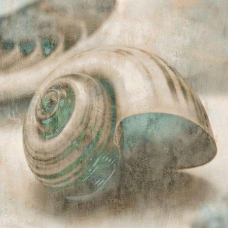 - Coastal Gems II Art Print  By John Seba