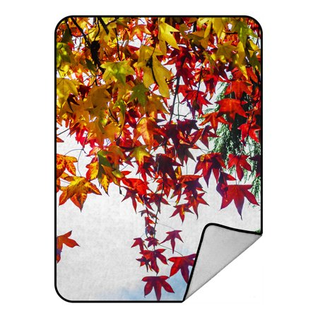 - YKCG Autumn Prime Trees Red and Yellow Maple Leaves Blanket Crystal Velvet Front and Lambswool Sherpa Fleece Back Throw Blanket 58x80inches