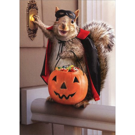 Avanti Press Squirrel Trick Or Treating Funny Halloween Card for $<!---->