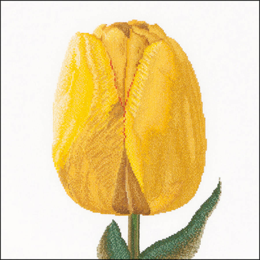 """Yellow Hybrid Tulip On Aida Counted Cross Stitch Kit, 13.25"""" x 14"""", 16 Count"""