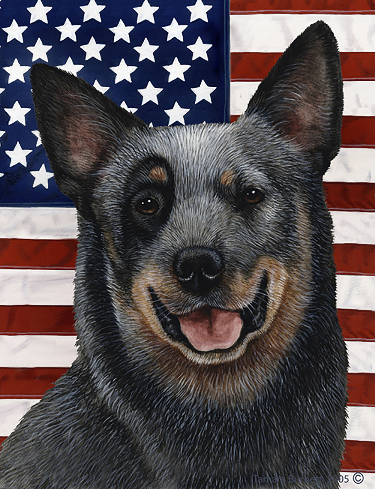Australian Cattle Dog Blue   Best Of Breed Patriotic II Garden Flags