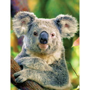 Masterpieces Koala Bear 100 Pc Puzzle