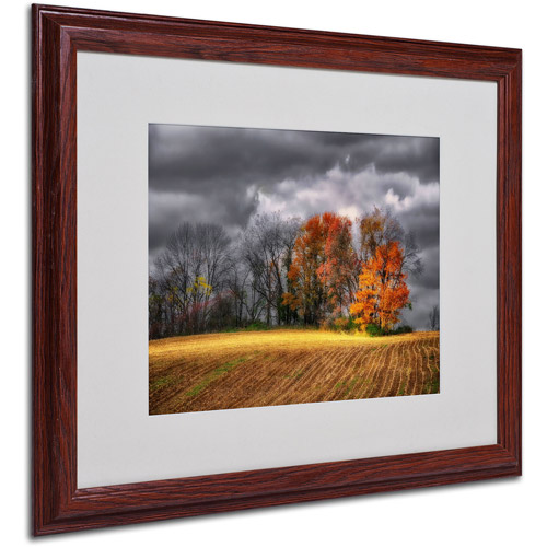 "Trademark Fine Art ""Autumn Field"" by Lois Bryan, Wood Frame"