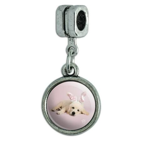 Golden Retriever Puppy Dog Rabbit Bunny Ears Italian European Style Bracelet Charm Bead 3d Golden Retriever Charm