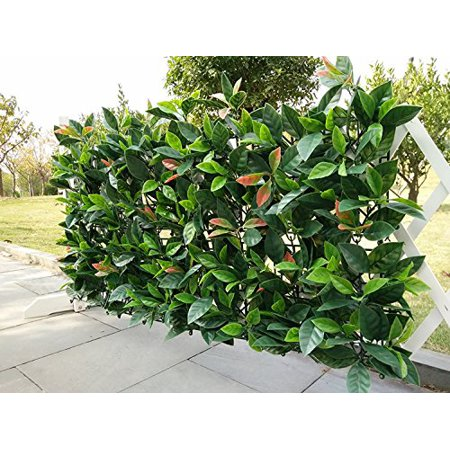 e-joy 12 Piece Artificial Topiary Hedge Plant Privacy Fence Screen Greenery Panels Suitable for Both Outdoor or Indoor, Garden or Backyard and Home Decorations, European Laurel 20'' Lx 20''