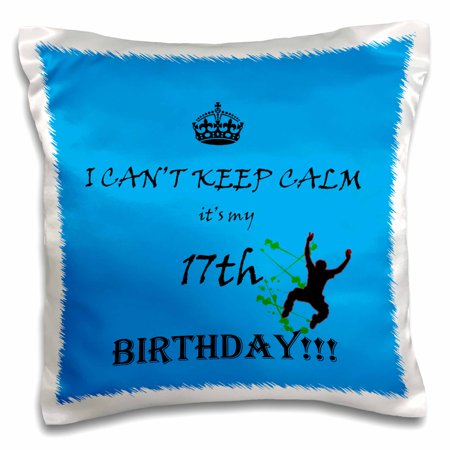 3dRose I cant keep calm its my 17th birthday. blue. quote. saying. - Pillow Case, 16 by 16-inch](Halloween Birthday Quotes And Sayings)