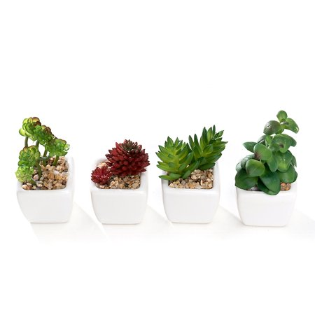 Set of 4 Different Mini Artificial Succulent Plants Potted in Cube-Shape White Ceramic Pot ()