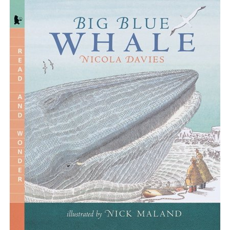 Big Blue Whale : Read and Wonder