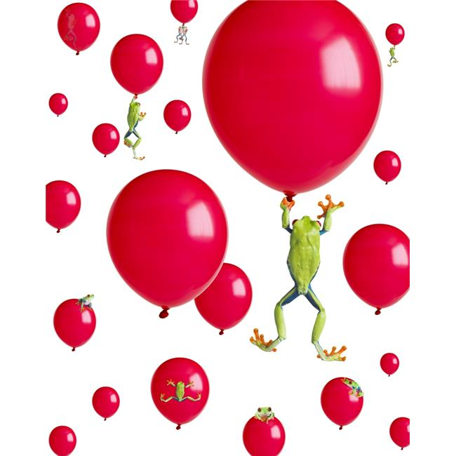 Posterazzi DPI1820121LARGE Red-Eyed Treefrogs Floating On Red Balloons Poster Print by Corey Hochachka, 26 x 32 - Large - image 1 of 1