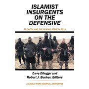 Islamist Insurgents on the Defensive - eBook