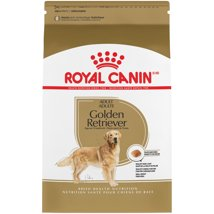 Dog Food: Royal Canin Golden Retriever