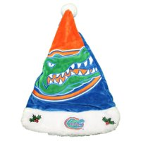 Product Image Florida Gators 2018 NCAA Basic Logo Plush Christmas Santa Hat 71997696576b
