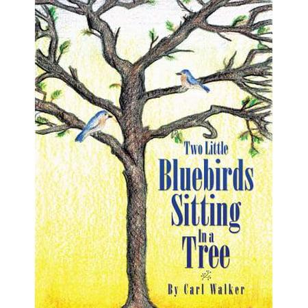 Two Little Bluebirds Sitting in a Tree - eBook