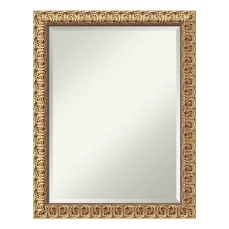 Amanti Art Florentine Gold Wall Mirror - 22W x 28H in.