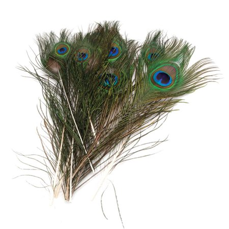 10 x 30cm Natural Peacock Feather House - Feather Decorations
