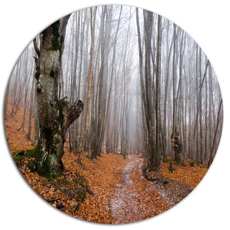 Design Art 'Road Covered by Fallen Leaves' Photographic Print on (Leaf Design Metal)