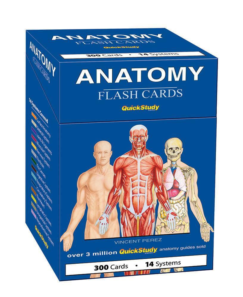 Quickstudy (Flash Cards): Anatomy Flash Cards (Other) - Walmart.com