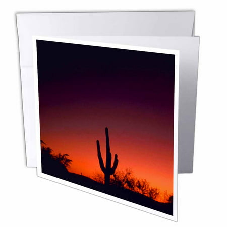 3dRose Sabino Canyon, Greeting Cards, 6 x 6 inches, set of 12