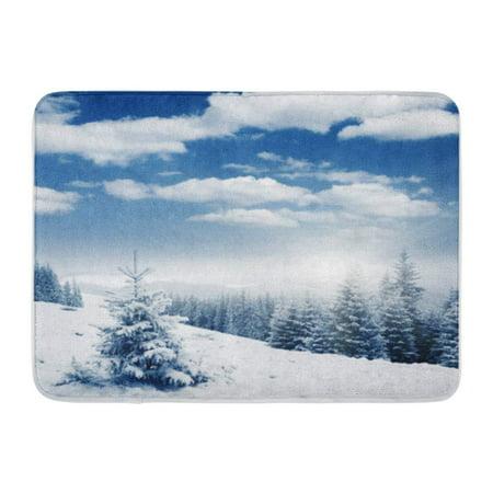 KDAGR Scene Beautiful Winter Panorama Snow Covered Trees Wonderland Doormat Floor Rug Bath Mat 23.6x15.7 inch (Door Covers For Winter)