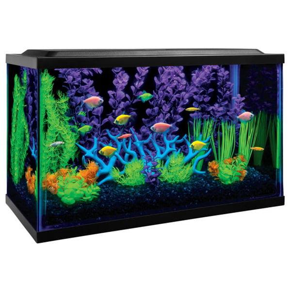GloFish 10-Gallon Aquarium Kit With Filter, Conditioner and Fish Food