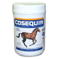 Cosequin Powder 700 Gram Container