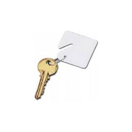 Blank Replacement Plastic Key Tags & Hangers, White, 15/Pack