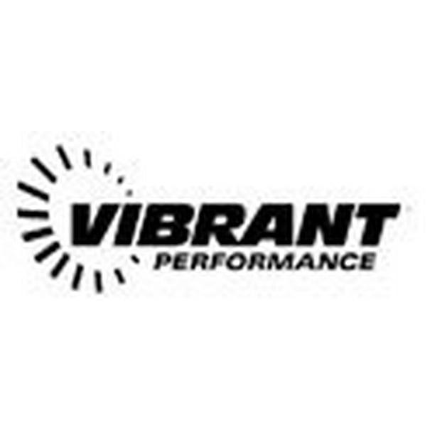 Vibrant Performance 16734 VIB16734 INLINE FUEL/OIL FILTER