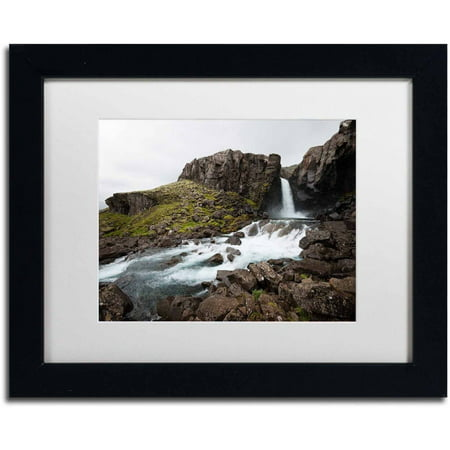 Trademark Fine Art 'Embedded in Nature' Canvas Art by Philippe Sainte-Laudy, White Matte, Black Frame (Arm Embedded)