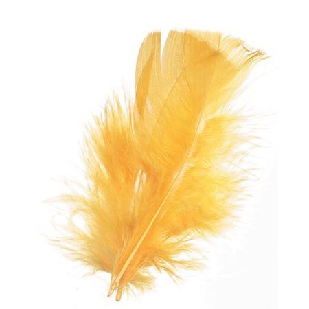 Feathers All Purpose Yellow 14 Grm Pack