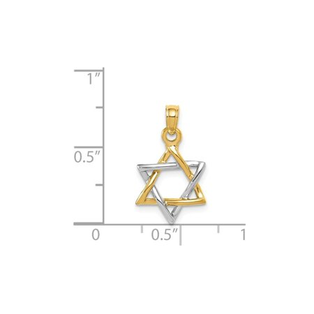 14K Yellow and White Gold Polished Star of David Pendant Necklace with Chain - image 2 de 3
