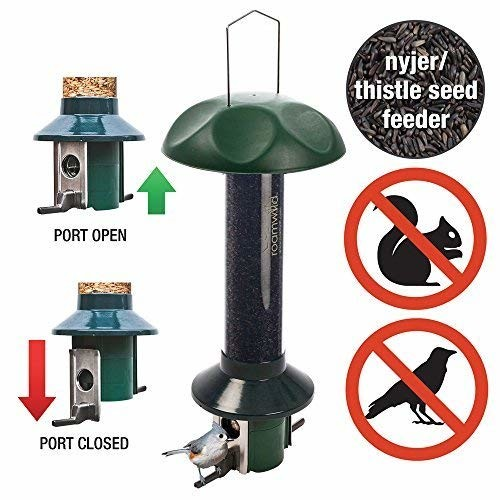 Roamwild PestOff Squirrel Proof Bird Feeder Nyjer/Thistle Finch Seed Version