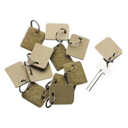 PM Company Replacement Key Tags 04985 (Pm Replacement Key Tags)