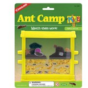 Ant Camp For Kids