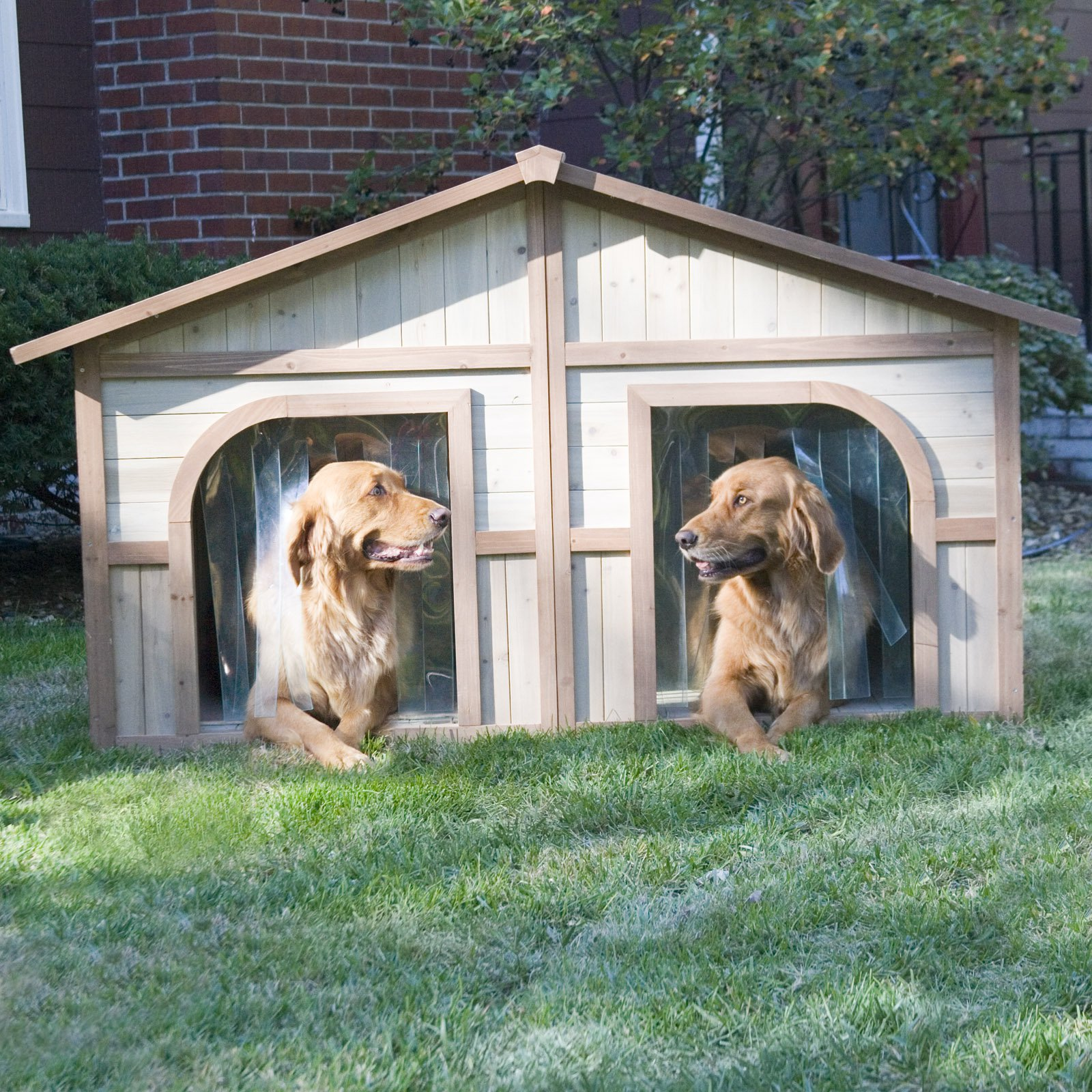 Boomer & George Wood Dog House with FREE Dog Doors