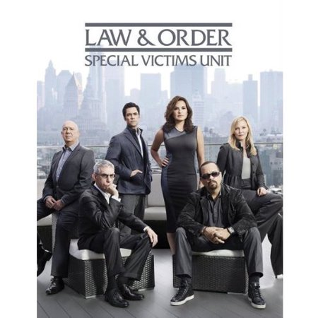 Law & Order Special Victims Unit: Year 14 (DVD)