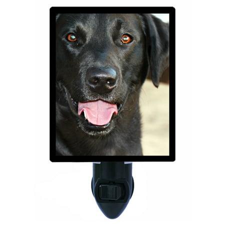 Night Light - Photo Light - Black Lab - Labrador Retriever - Dog ()