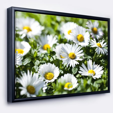 DESIGN ART Designart 'Spring Background with White Flowers' Floral Framed Canvas Art Print