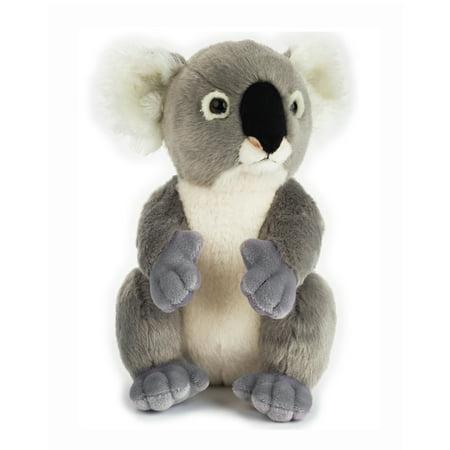 Koala Pals (Lelly - National Geographic Basic Plush, Koala)