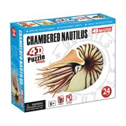 Fame Master Enterprise Build Your Own Chambered Nautilus Fossil Model 3D Puzzle for Age 6+ (24 Piece), 3""