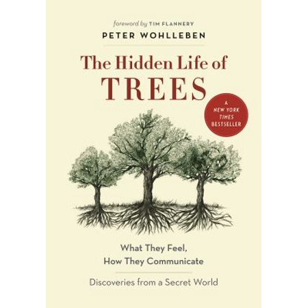 The Hidden Life Of Trees  What They Feel  How They Communicate  Discoveries From A Secret World