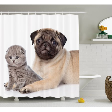 Pug Shower Curtain Cute Young Pets Kitten And Puppy Pug Scottish