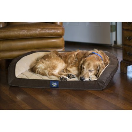 Sertapedic Dog Bed Reviews