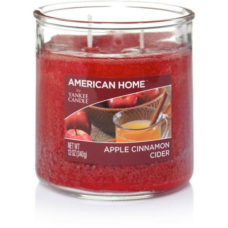 American Home by Yankee Candle Apple Cinnamon Cider, 12 oz Medium 2-Wick Tumbler