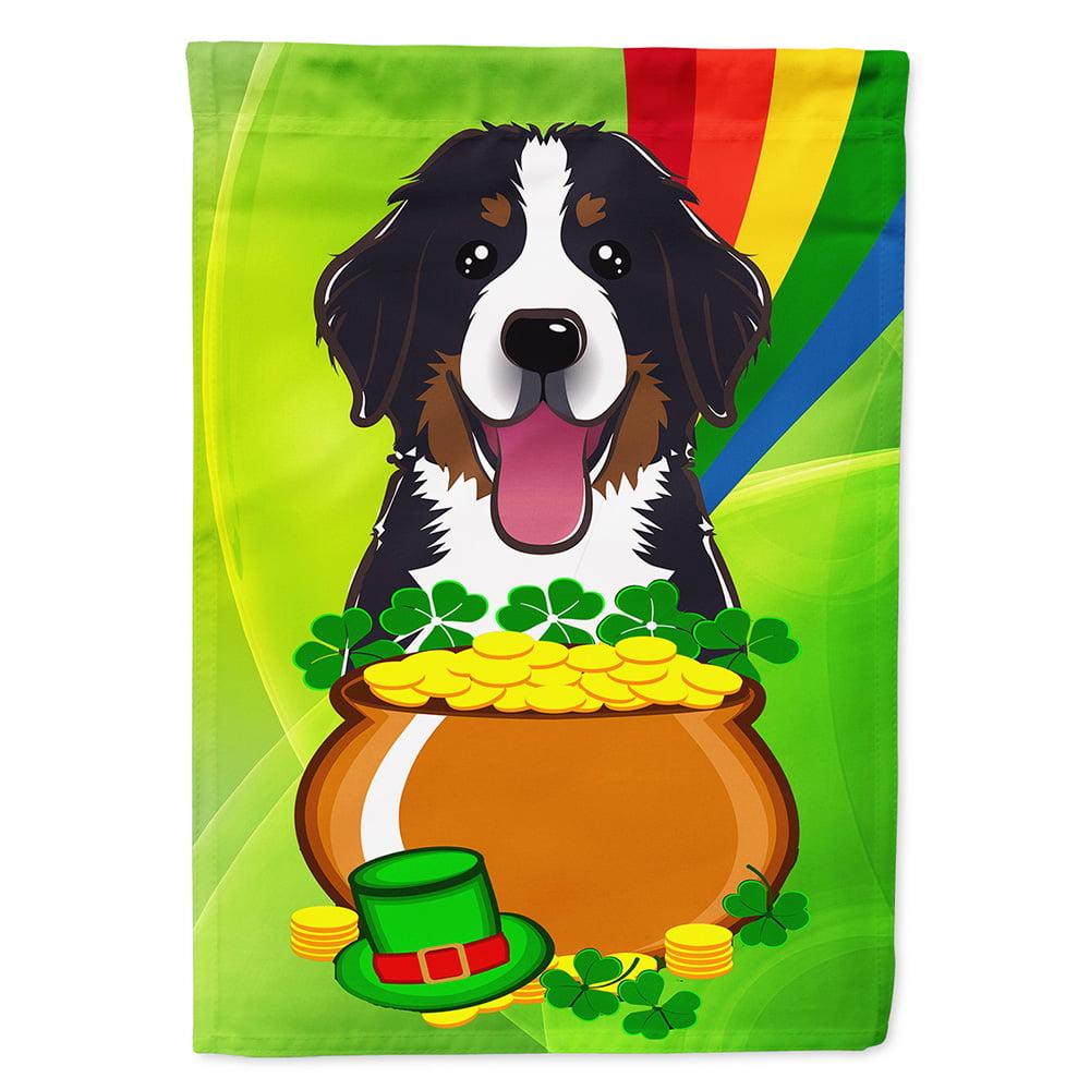 Patricks Day Night Light 6 x 4 Multicolor Carolines Treasures Bernese Mountain Dog St