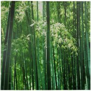 "Oriental Furniture Bamboo Canvas Wall Art, 31.5""H x 31.5""W"