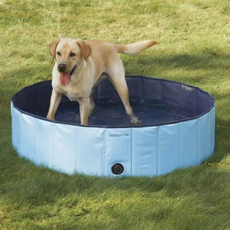 Guardian Gear Splash About Dog Pool Large Sky Blue