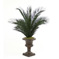 6 ft. Preserved Phoenix Palm Tree in Rust Fiberglas Classic Urn