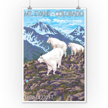 Poster Original Colour - Mt. Evans, Colorado - Goat Family - Lantern Press Original Poster (9x12 Art Print, Wall Decor Travel Poster)